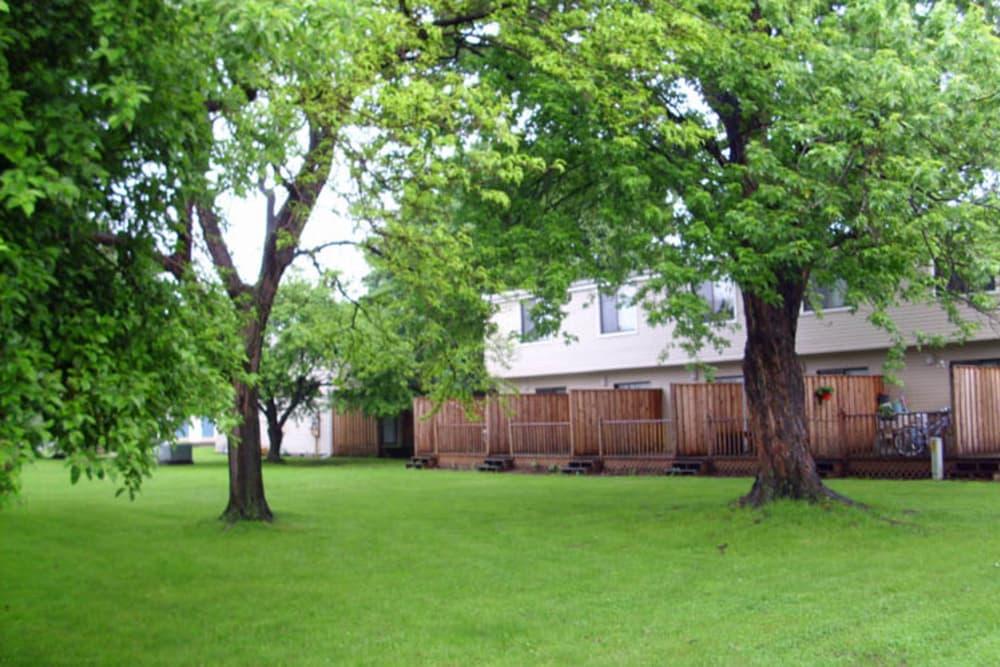 Nice greenery outside apartments at Campus Edge at Brigham