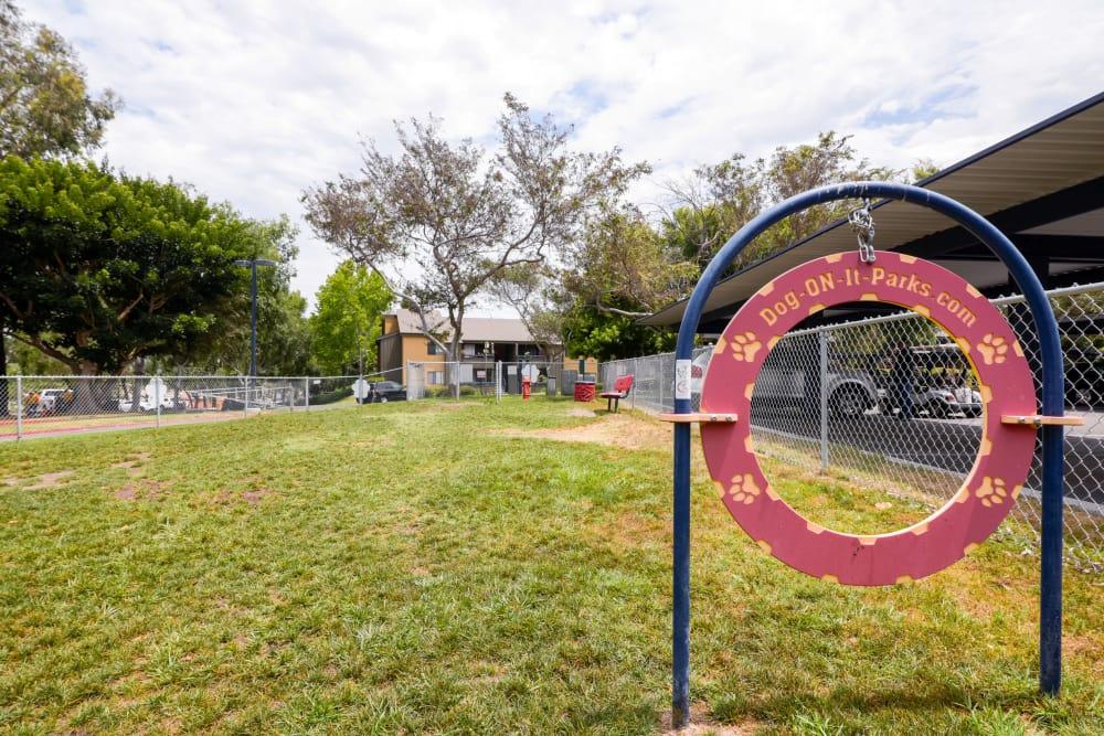 Resident fenced dog park Presidio at Rancho Del Oro in Oceanside