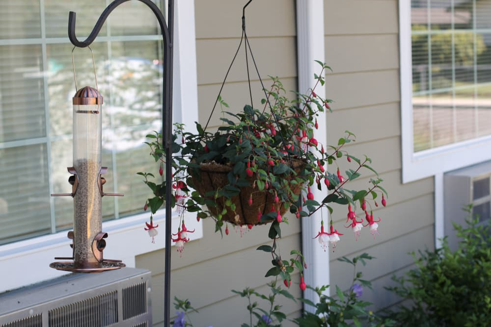 Memory Haven hanging flower pot and bird feeder.