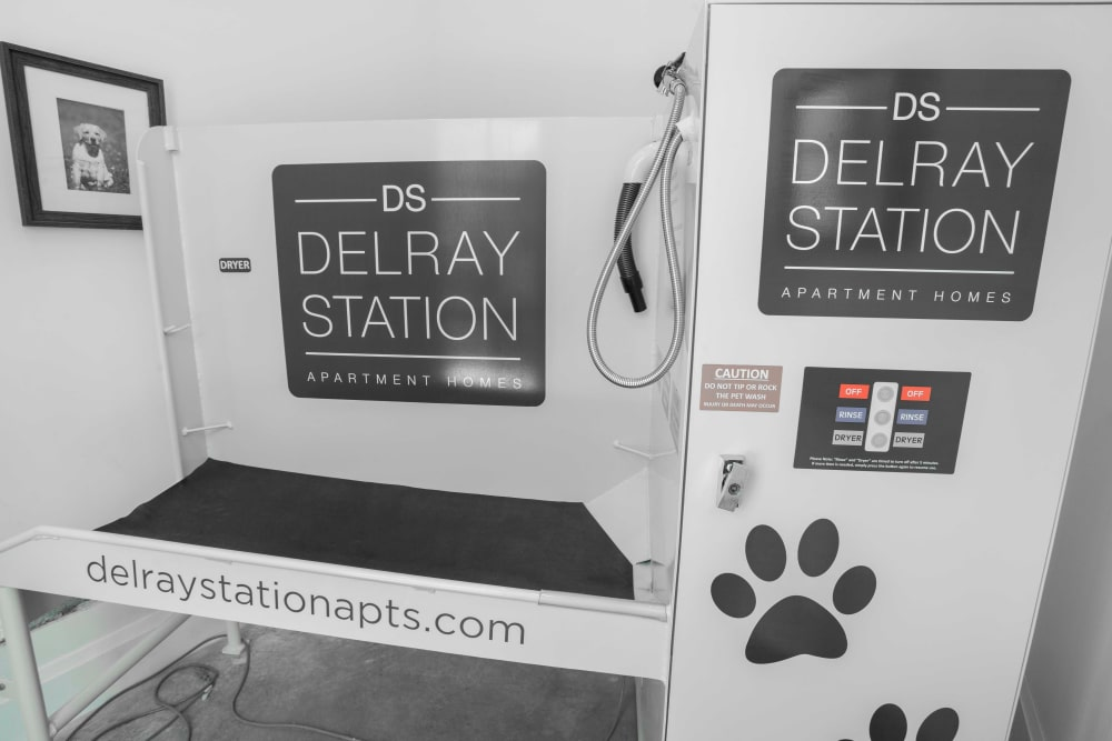Dog wash station at Delray Station in Delray Beach, Florida