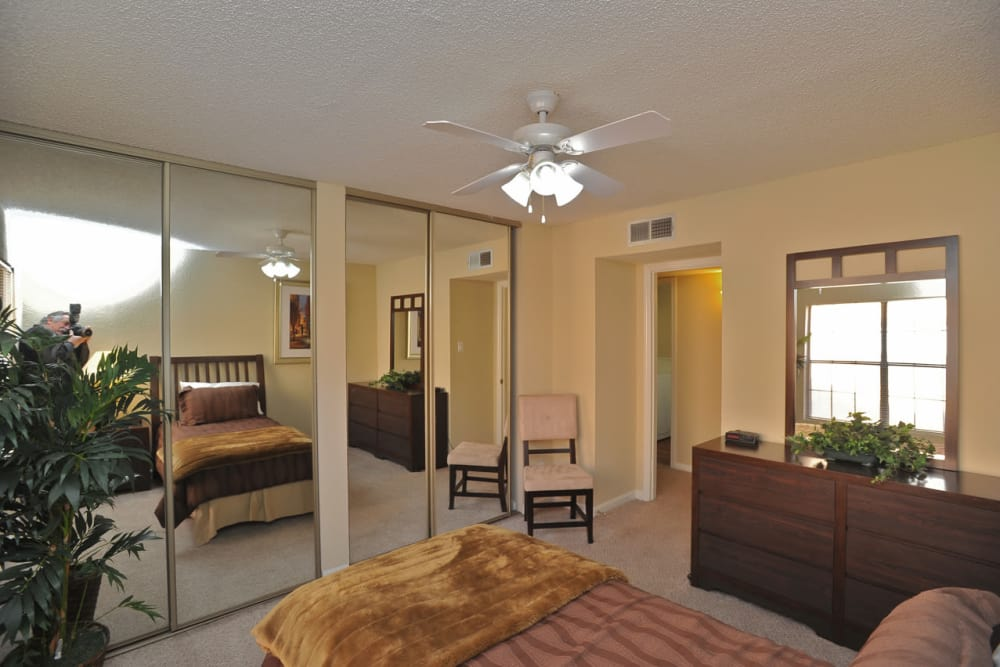 Enjoy a spacious bedroom at Pear Tree in El Paso apartments