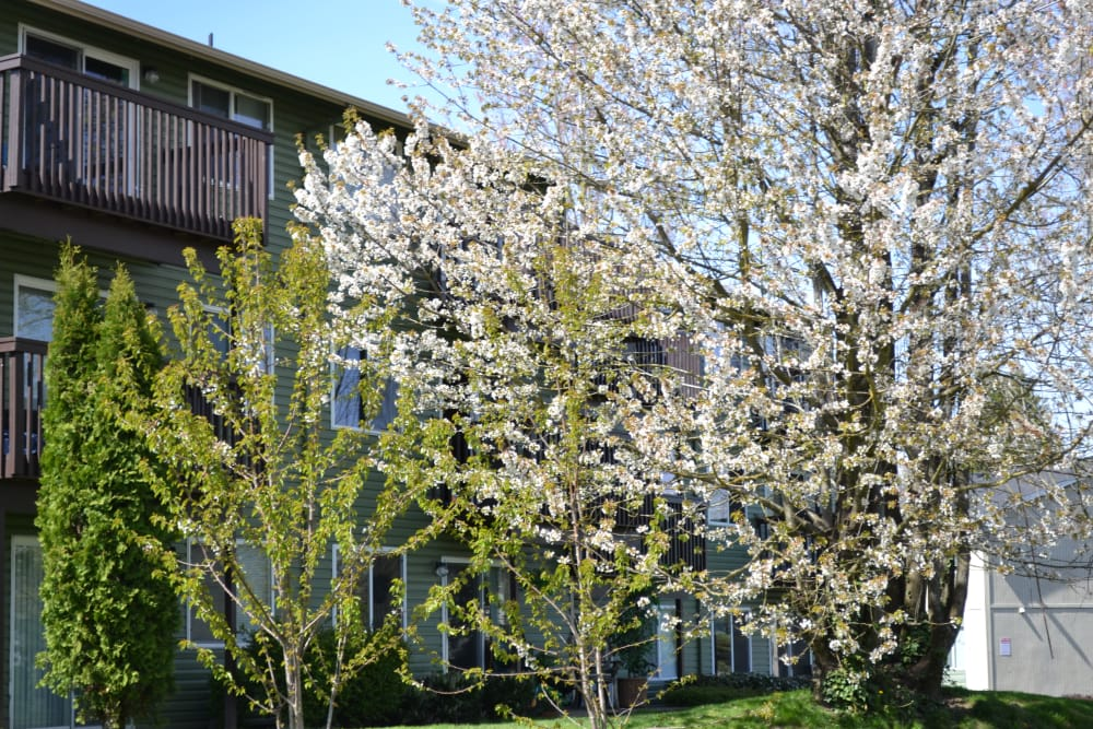 Exterior view of the Pier Park community in Portland
