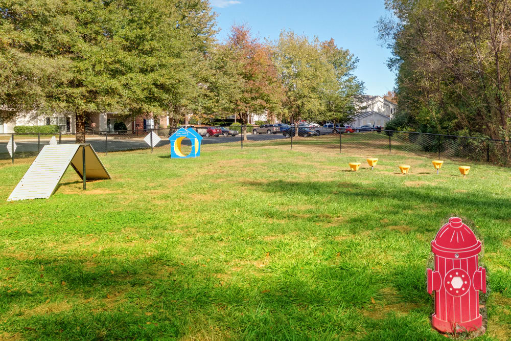 Dog park at Forest Oaks Apartment Homes