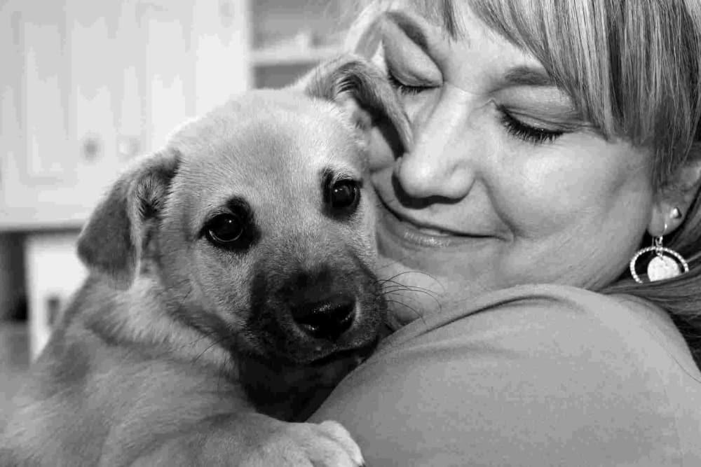 Team member at Oldtown Veterinary Hospital hugging dog