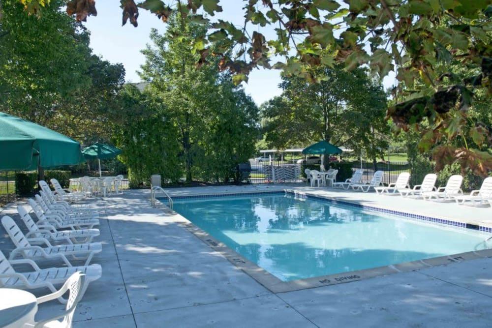 Sparkling swiming pool at Adams Creek