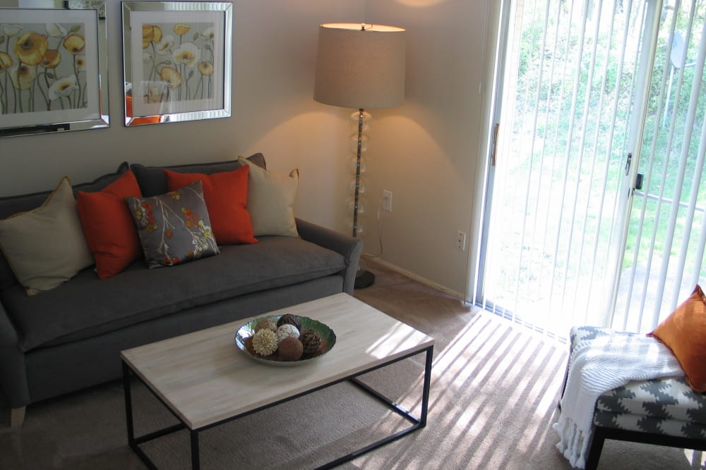 Our apartments in Rosedale, Maryland offer cozy living rooms
