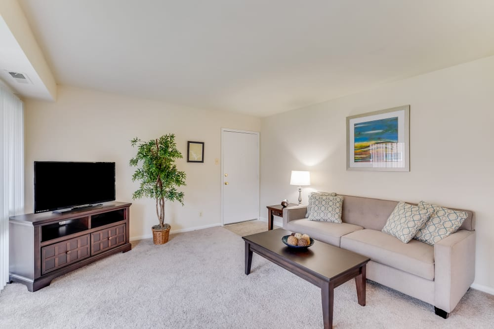 Beautiful living room at apartments in Rockville, Maryland