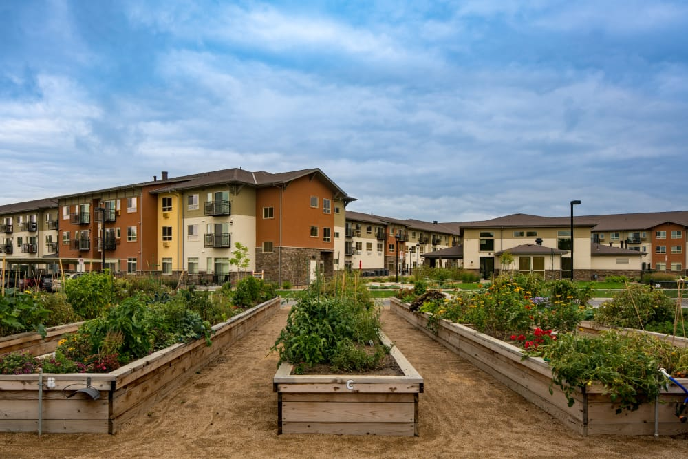On-site garden at Affinity at Loveland