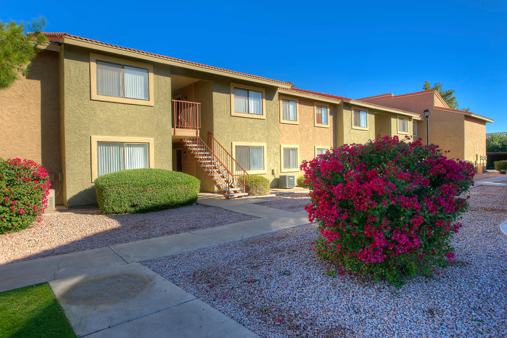 View of the Argenta Apartment Homes in Mesa