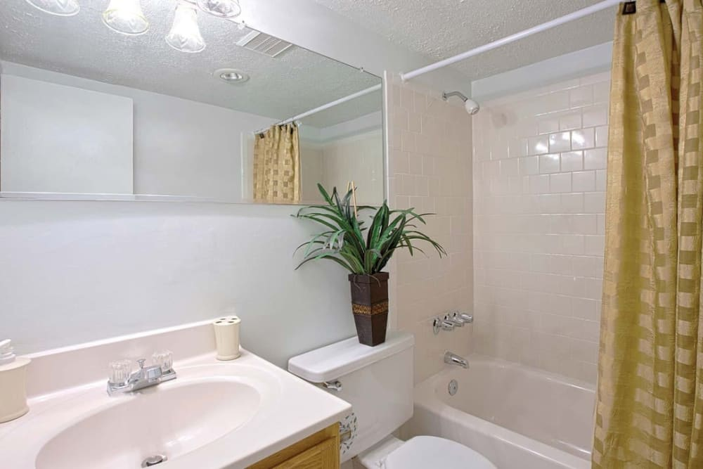 Bright and roomy bathroom at Parkway Apartments in Williamsburg