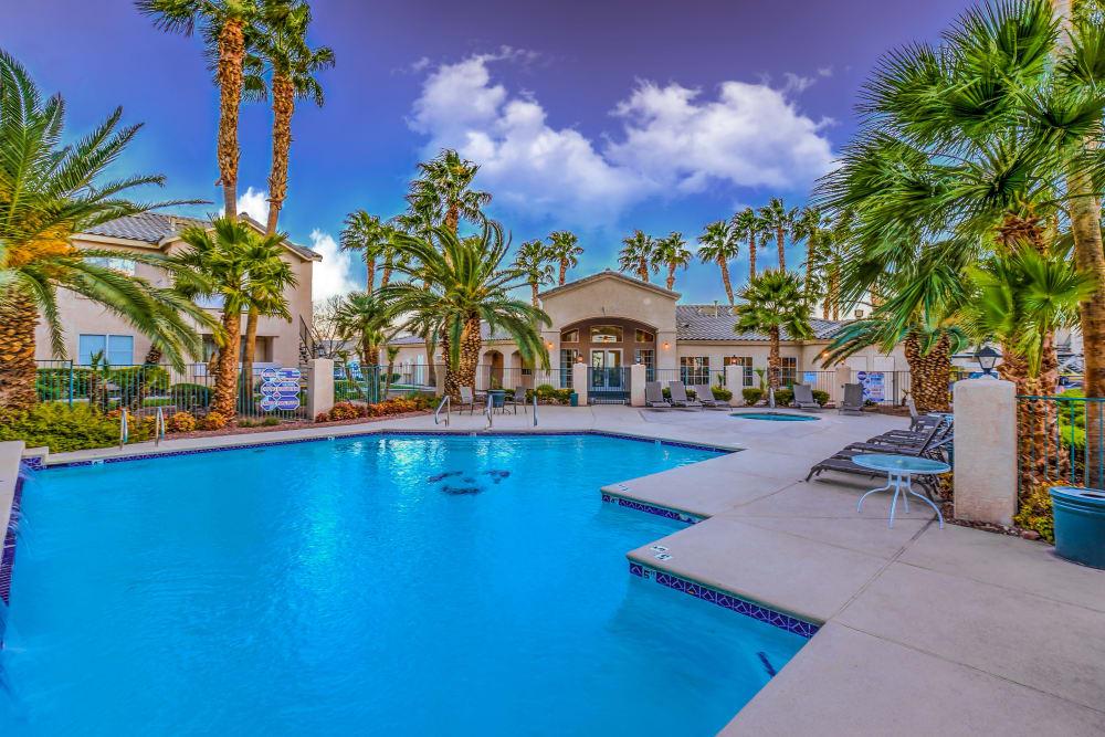 Beautiful palm trees at Portofino Villas Apartments