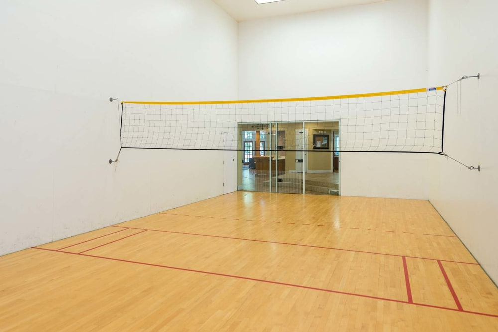 An indoor racquetball court with badminton net at Reflections at Virginia Beach in Virginia Beach, Virginia