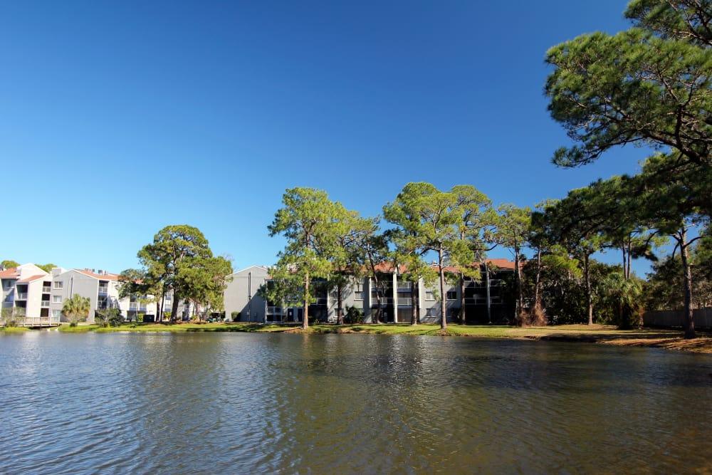 Lake at Promenade at Edgewater in Dunedin, Florida