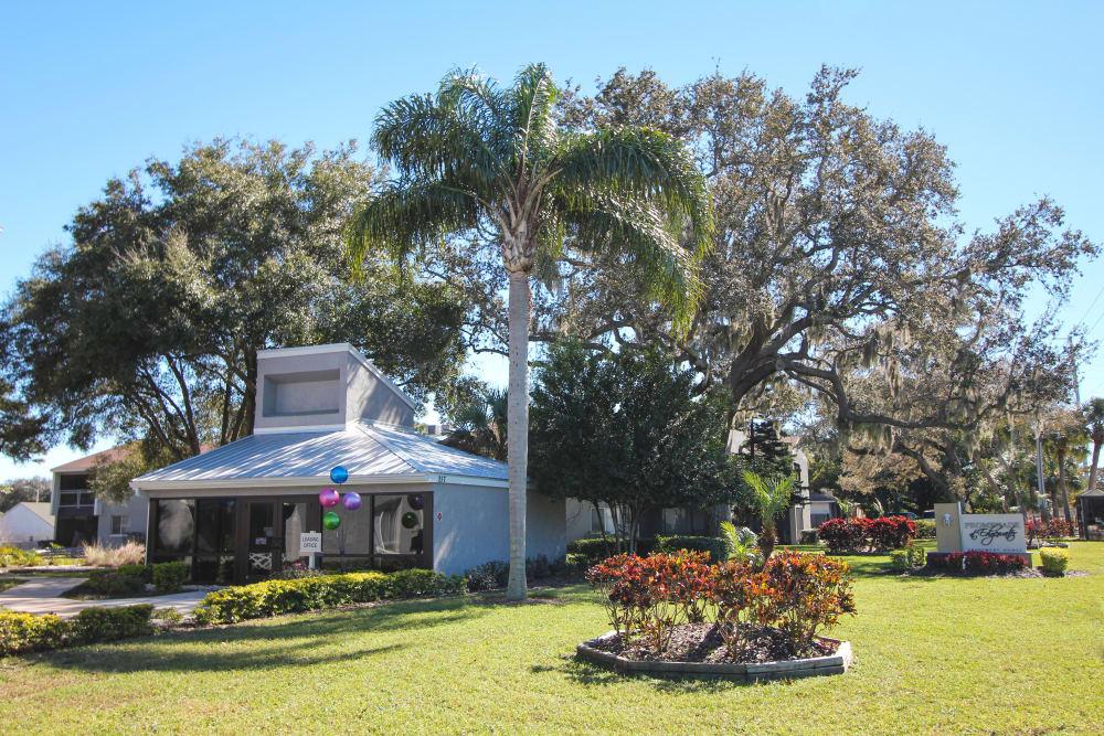 Exterior view of Promenade at Edgewater in Dunedin, Florida