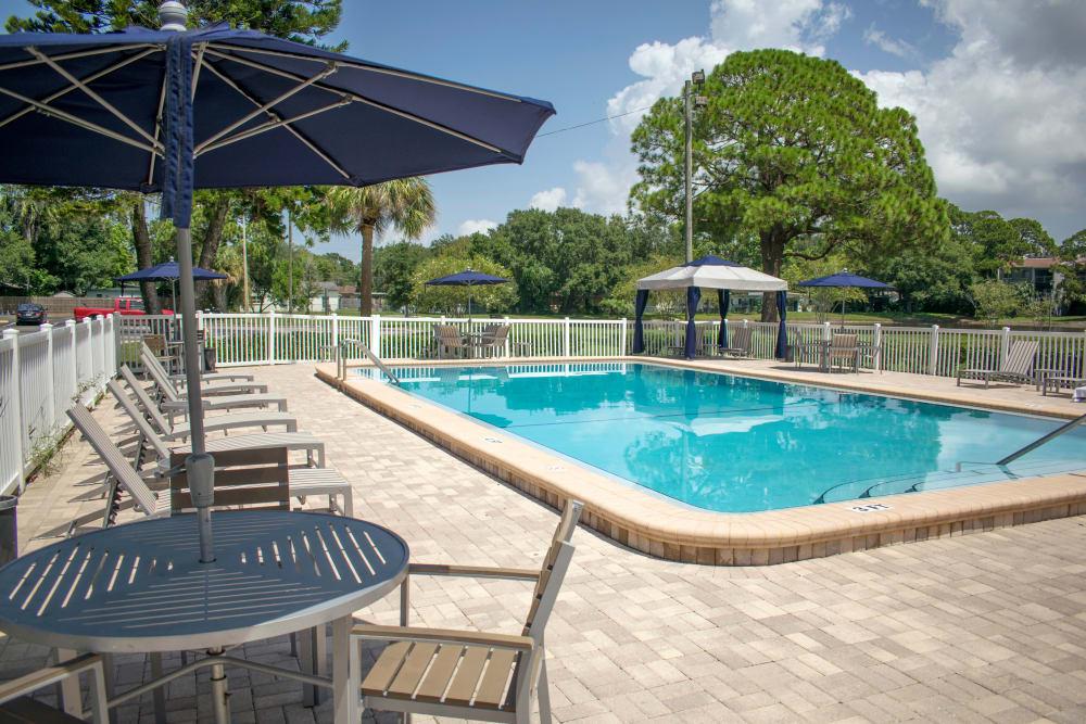 Enjoy our swimming pool at Promenade at Edgewater in Dunedin, Florida