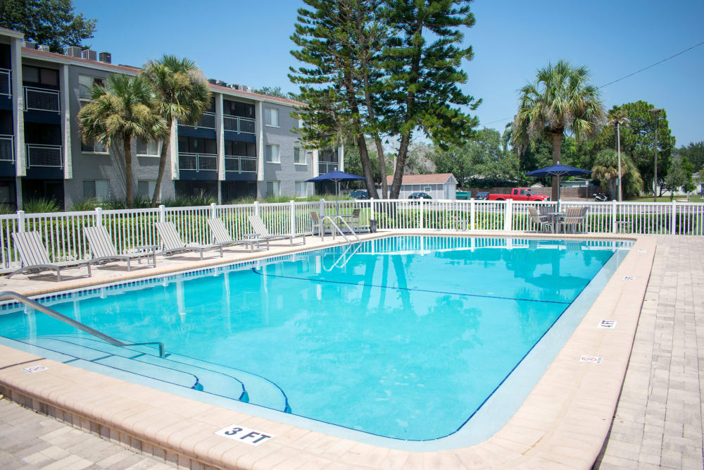 Apartments with a swimming pool that is great for entertainment in Dunedin, Florida