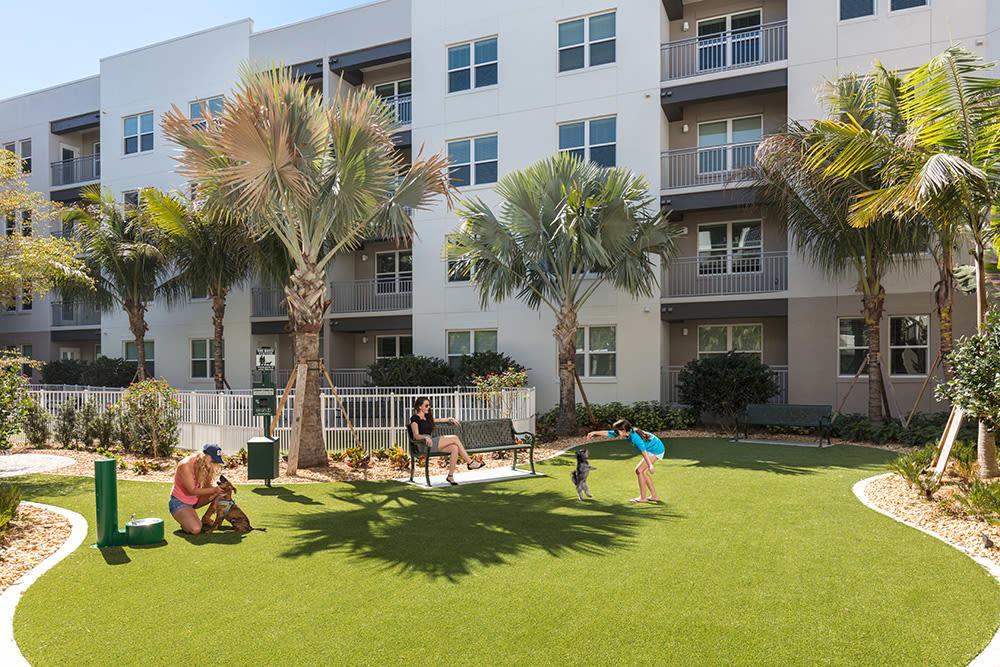 Rosemary district sarasota fl apartments for rent near - Garden park apartments arlington tx ...