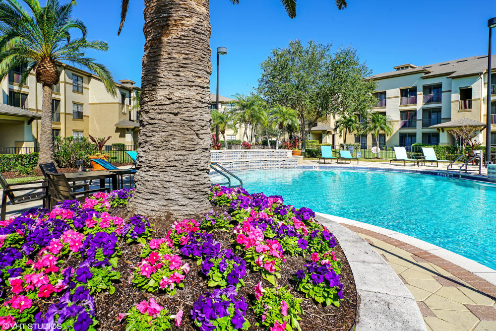 Resort-style pool at Verandahs of Brighton Bay