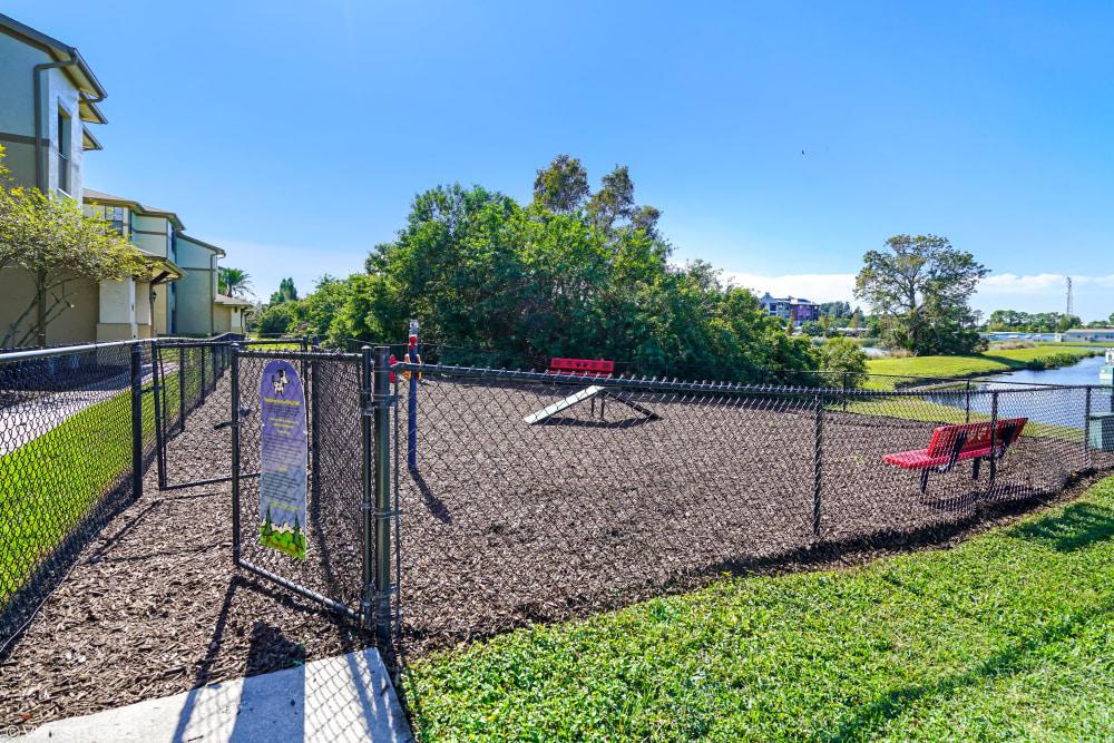 Verandahs of Brighton Bay onsite dog park