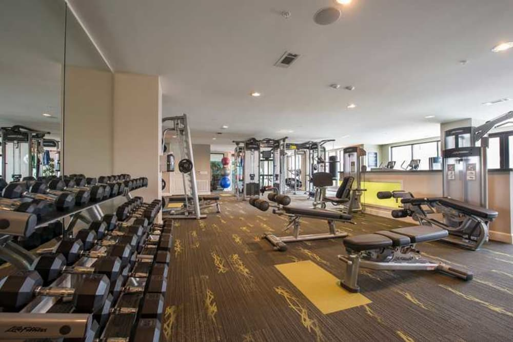 Spacious fitness center at Imperial Lofts in Sugar Land, Texas