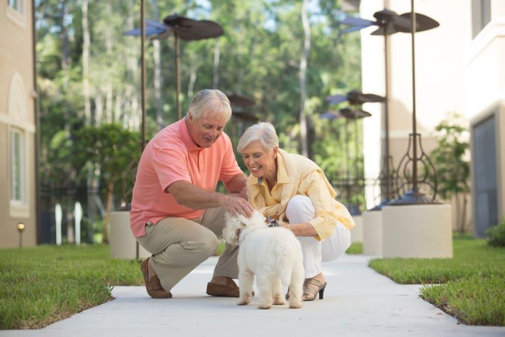 Petting dogs is great in Bonita Springs
