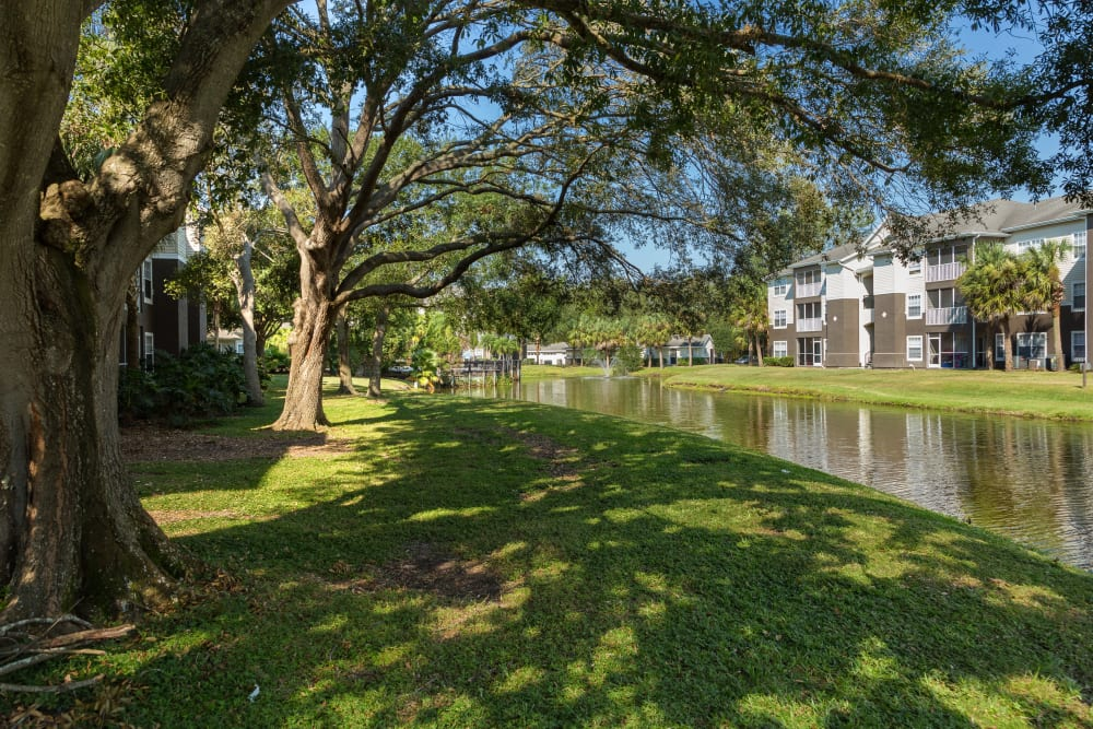 Mature trees and well-maintained landscaping at Tuscany Villas of Brandon Apartment Homes
