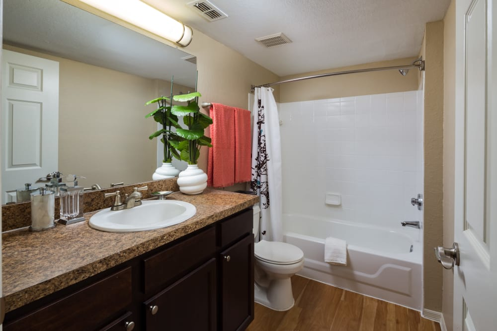 Bathroom in apartment home at Alvista Sterling Palms in Brandon, Florida
