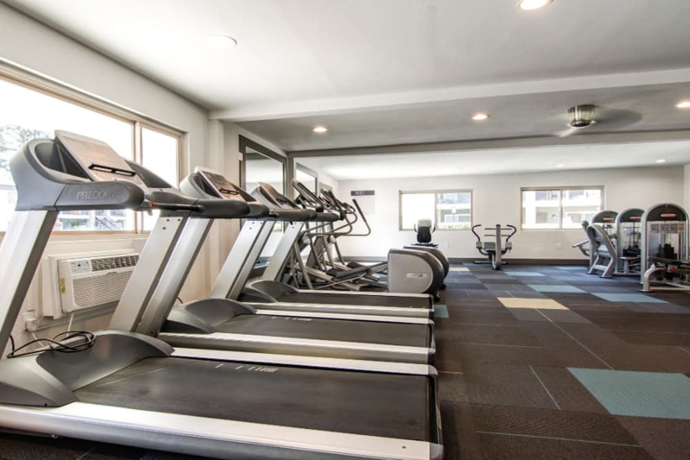 Luxury fitness center at Sofi Poway in Poway, CA