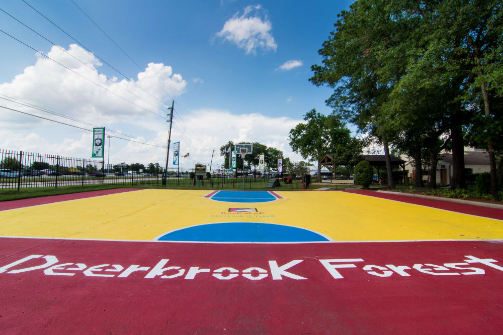 Outdoor basketball court at Deerbrook Forest Apartments