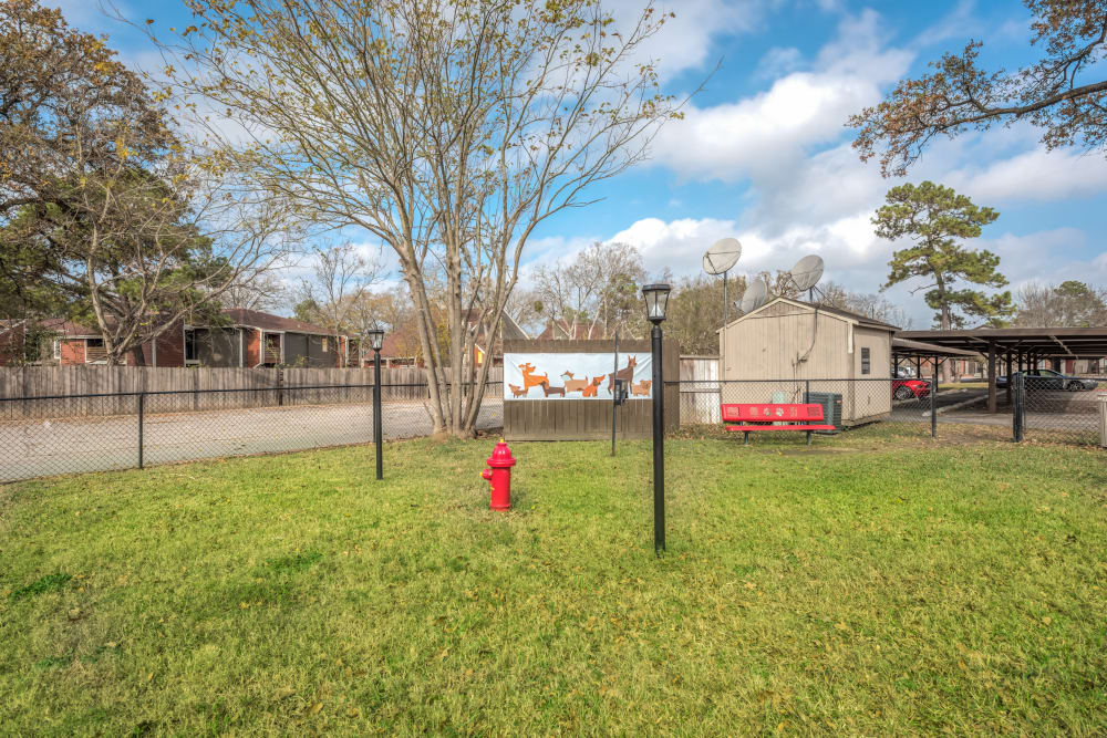 Dog park at Rock Creek apartments in Houston, Texas