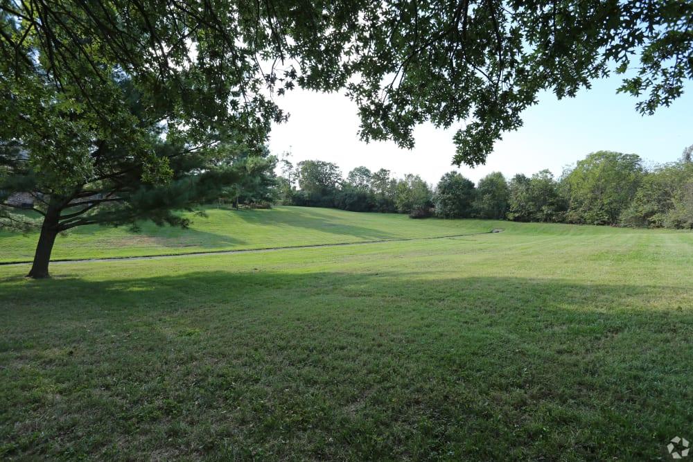 Green fields at Abigail Gardens Apartments in Lexington, Kentucky