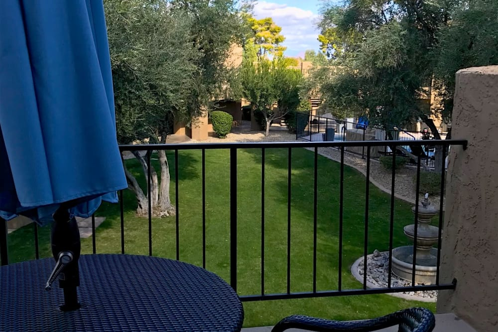 Spacious and beautiful garden at Scottsdale Village Square, A Pacifica Senior Living Community in Scottsdale, Arizona