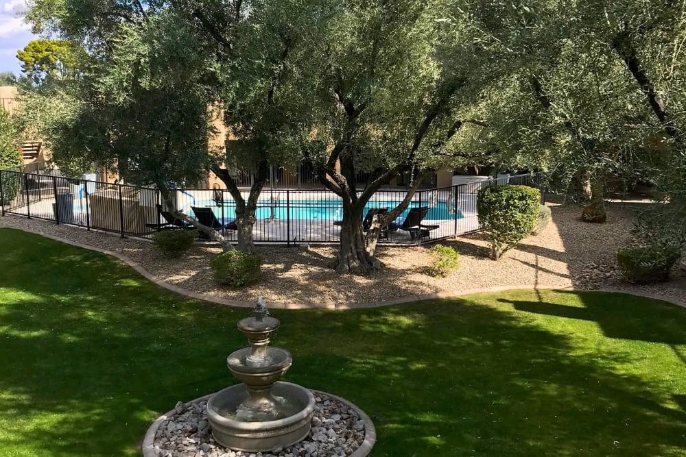 Beautiful garden at Scottsdale Village Square, A Pacifica Senior Living Community in Scottsdale, Arizona