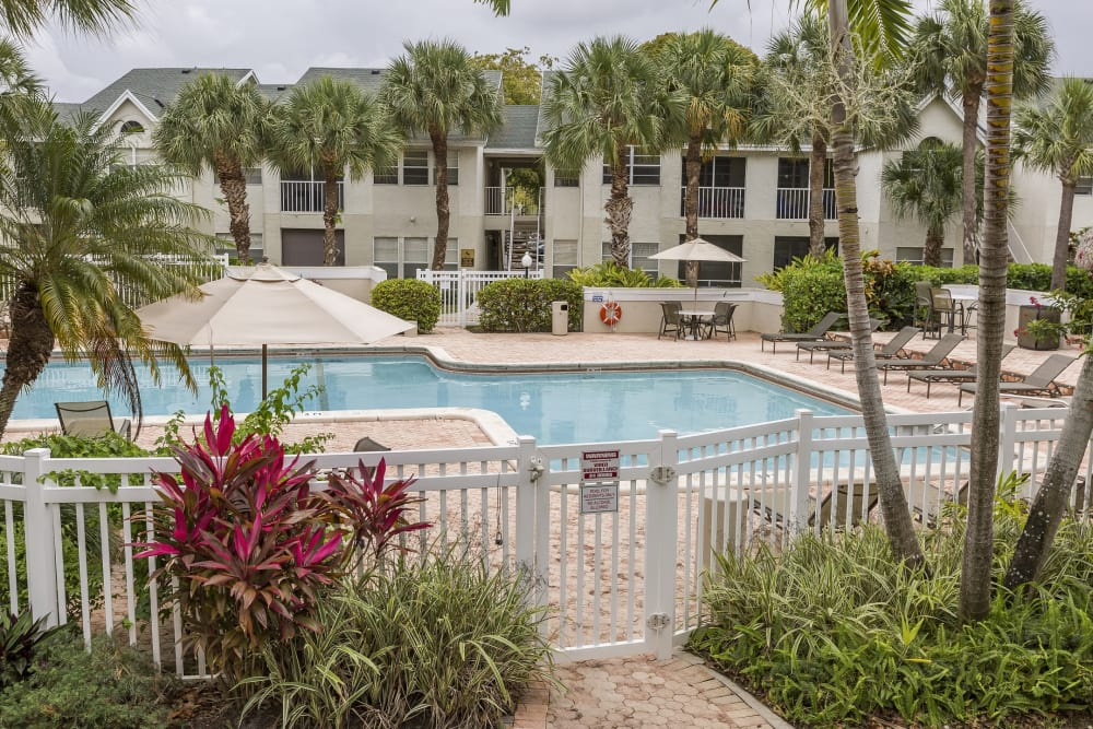 Swimming pool at Lago Paradiso at the Hammocks in Miami, Florida