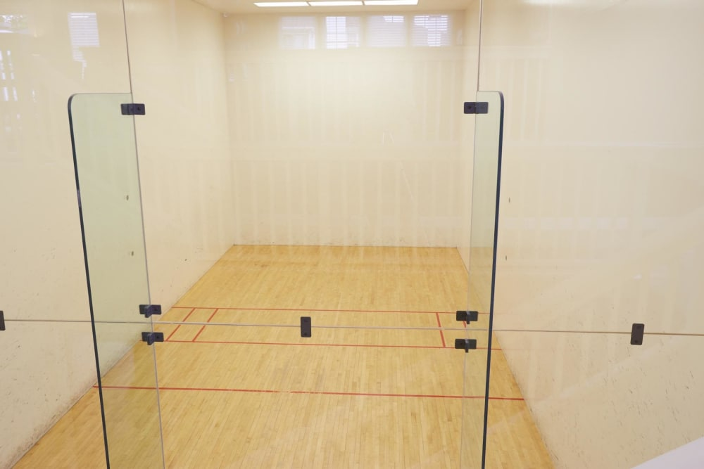 Middletown Ridge Apartments offers a racquetball court in Middletown, Connecticut