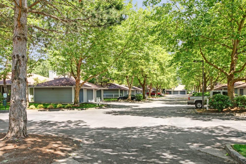 Driveway through neighborhood at Jasper Place in Beaverton, OR