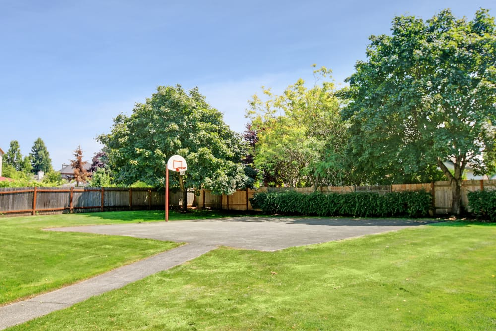 Basketball court at Jasper Place in Beaverton, OR