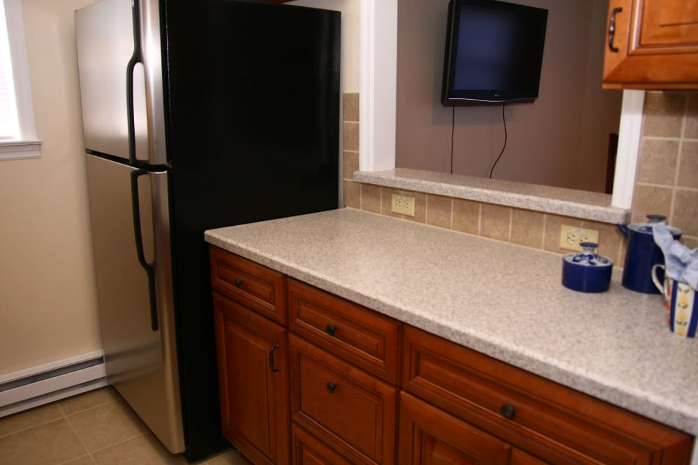 Refrigerator and TV at Cloverdale Associates