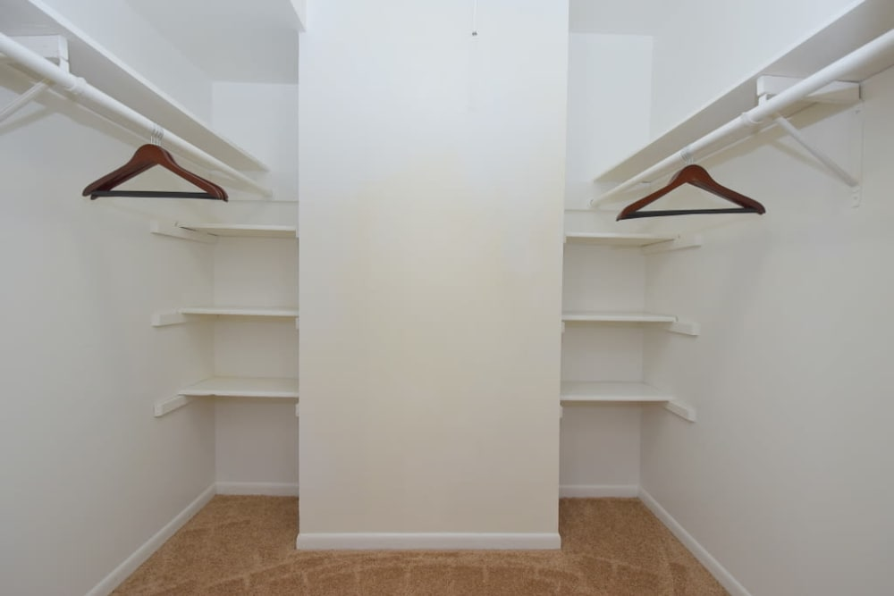 Spacious closet at Palms at Chimney Rock Apartments