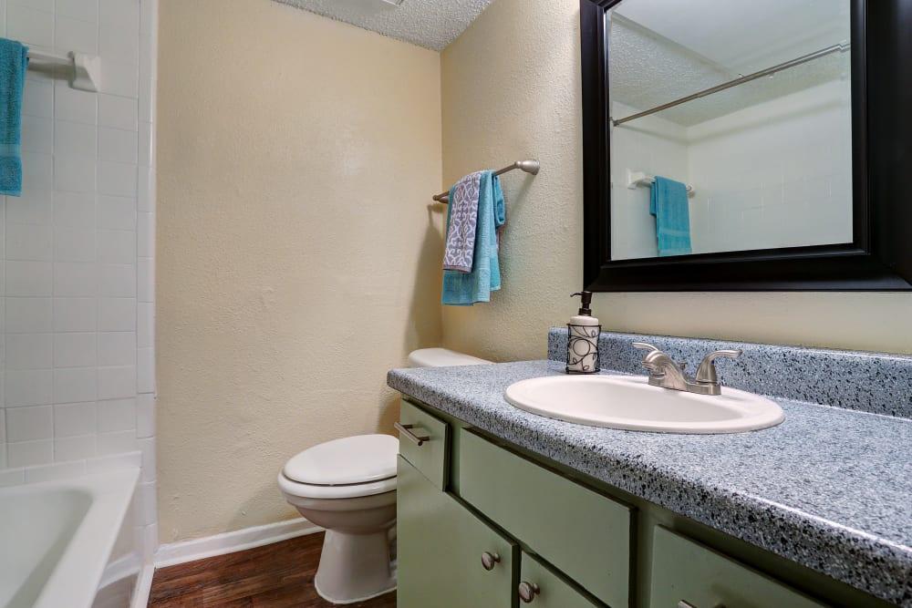 Unique bathroom at Westwood Village Apartments in Rosenberg, Texas