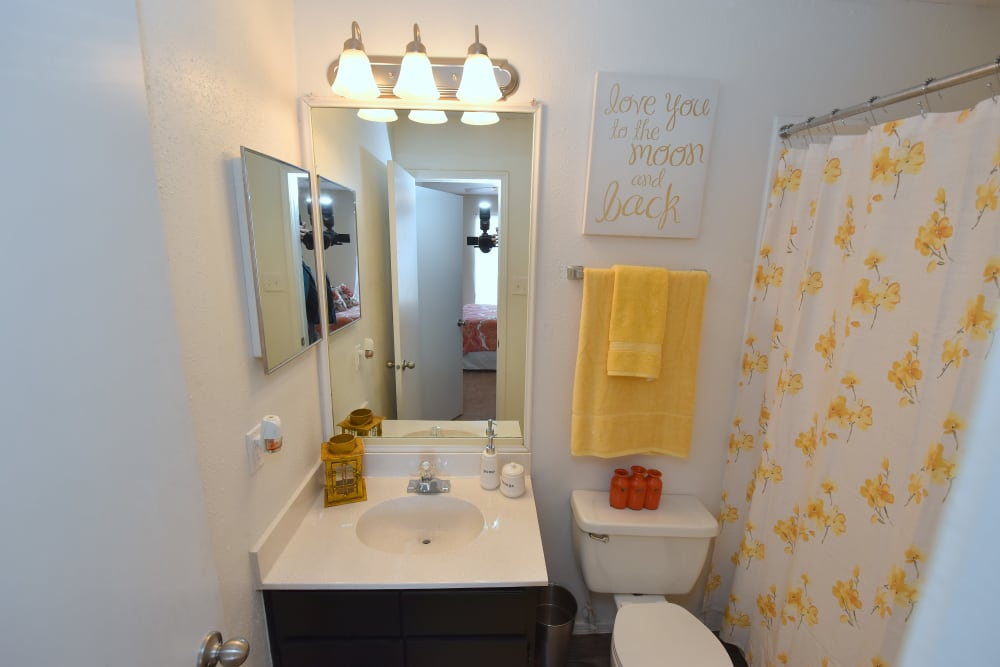Private bathroom at Brookmore Hollow Apartments in Rosenberg, Texas