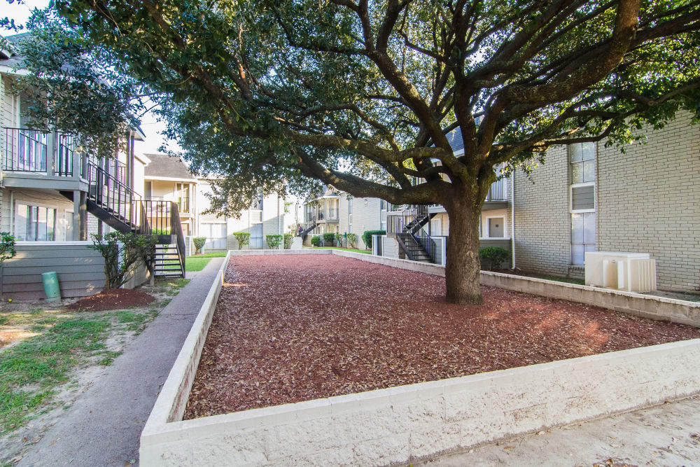 Beautiful landscaping at Northlake Manor Apartments in Humble, TX