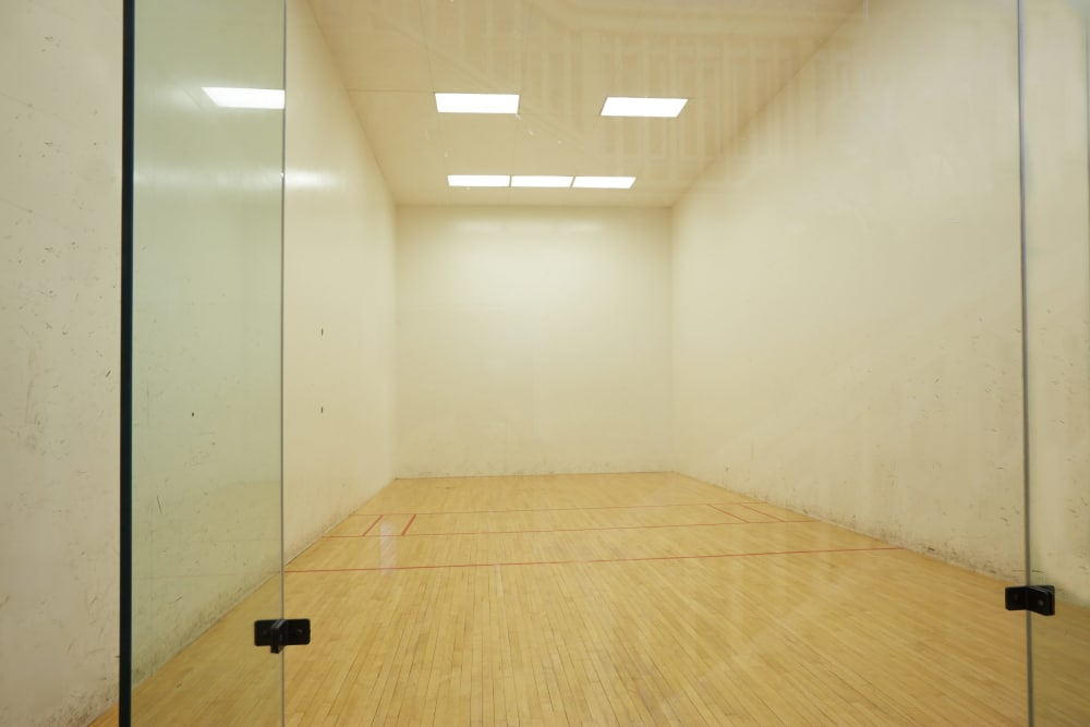 Racquetball court at Middletown Ridge Apartments in Middletown