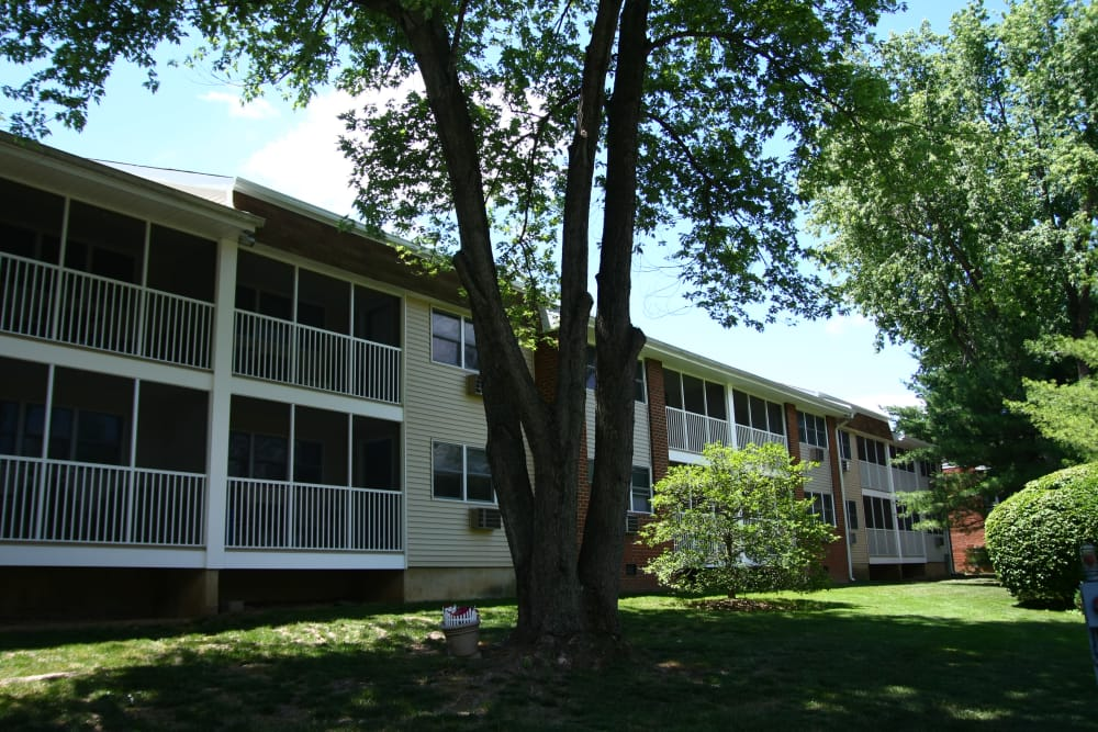 Beautifully maintained green spaces and more await you at Park Apartments in Bordentown