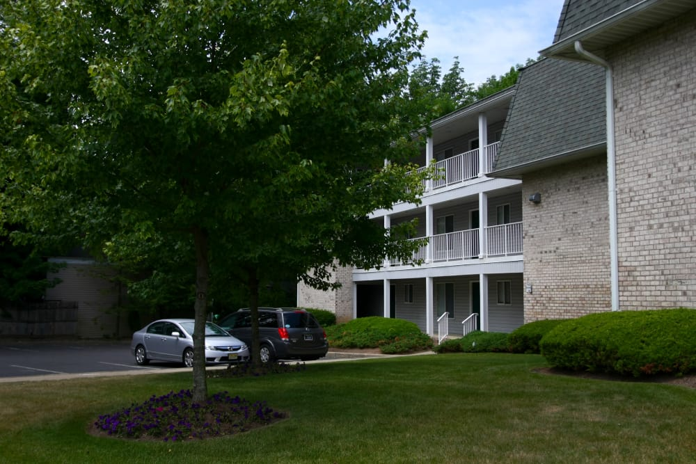 Mature trees and meticulously maintained lawn at Parkview Commons Apartments