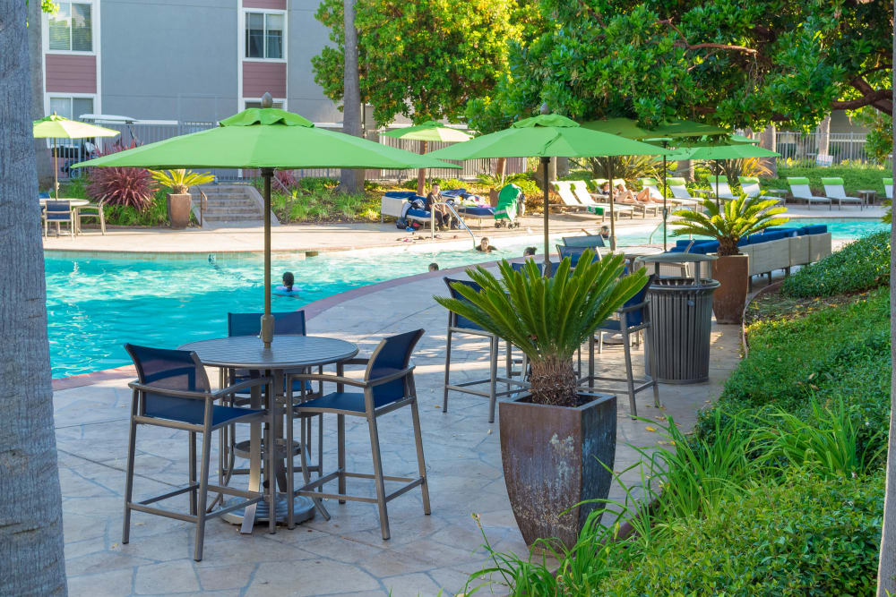 Poolside seating at Summer House Apartments
