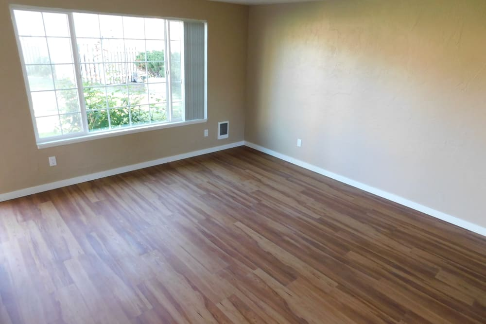 Enjoy apartments with a spacious living room at Lakeside Apartments
