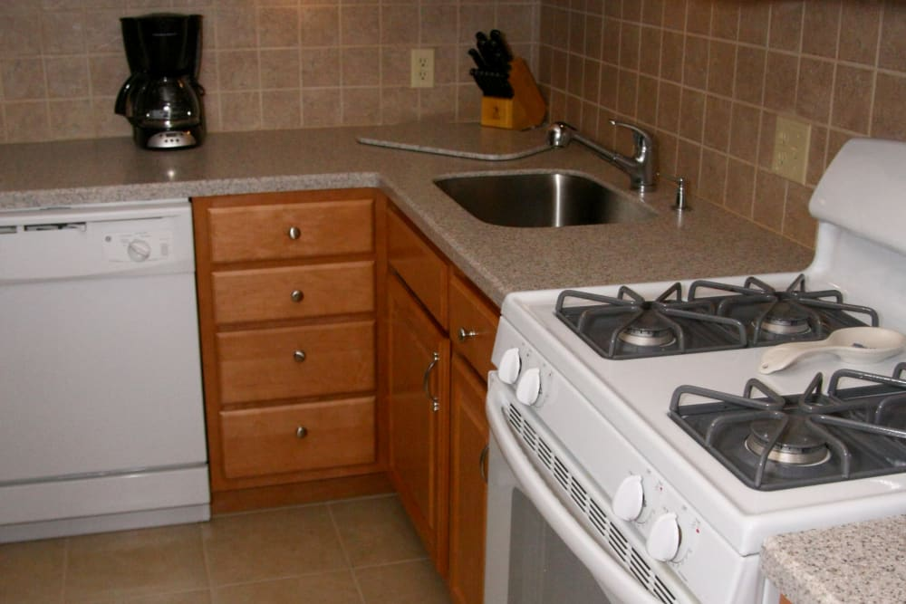 A close up of the gas stove range and counters in the kitchen at Pompton Gardens