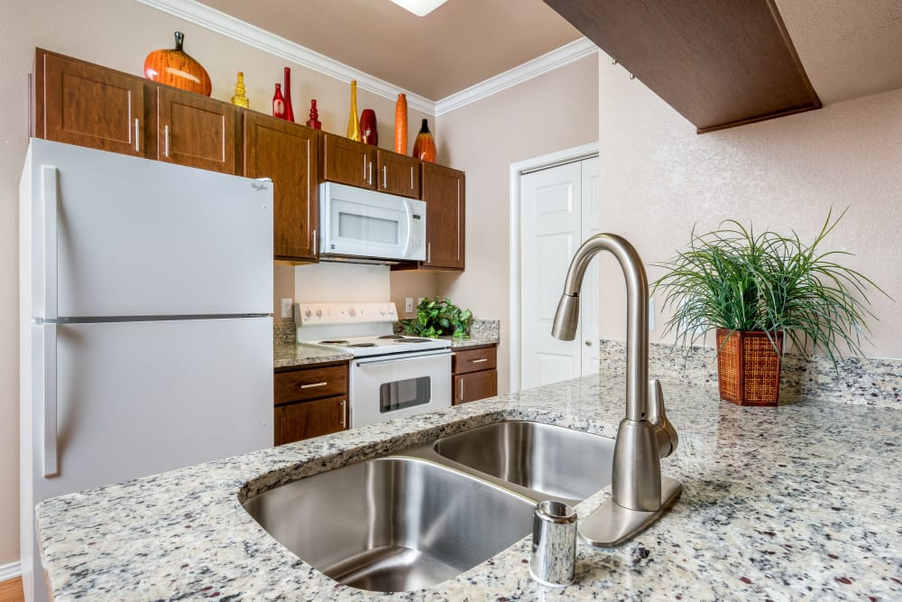 Modern kitchen at Ballantyne Apartments in Lewisville, Texas