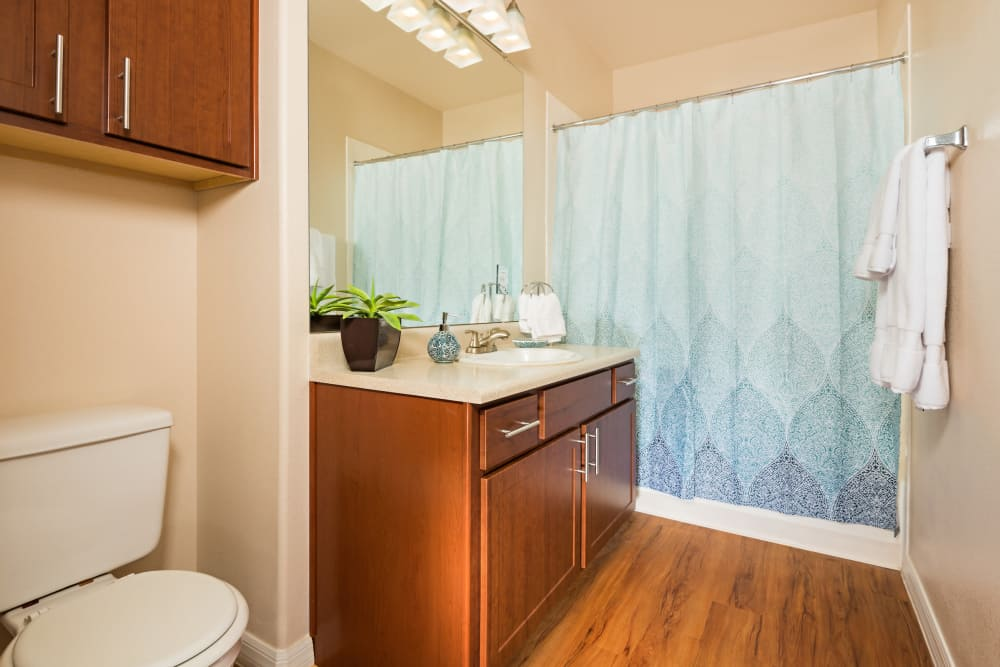 Bathroom at Villas on Hampton Avenue in Mesa, Arizona